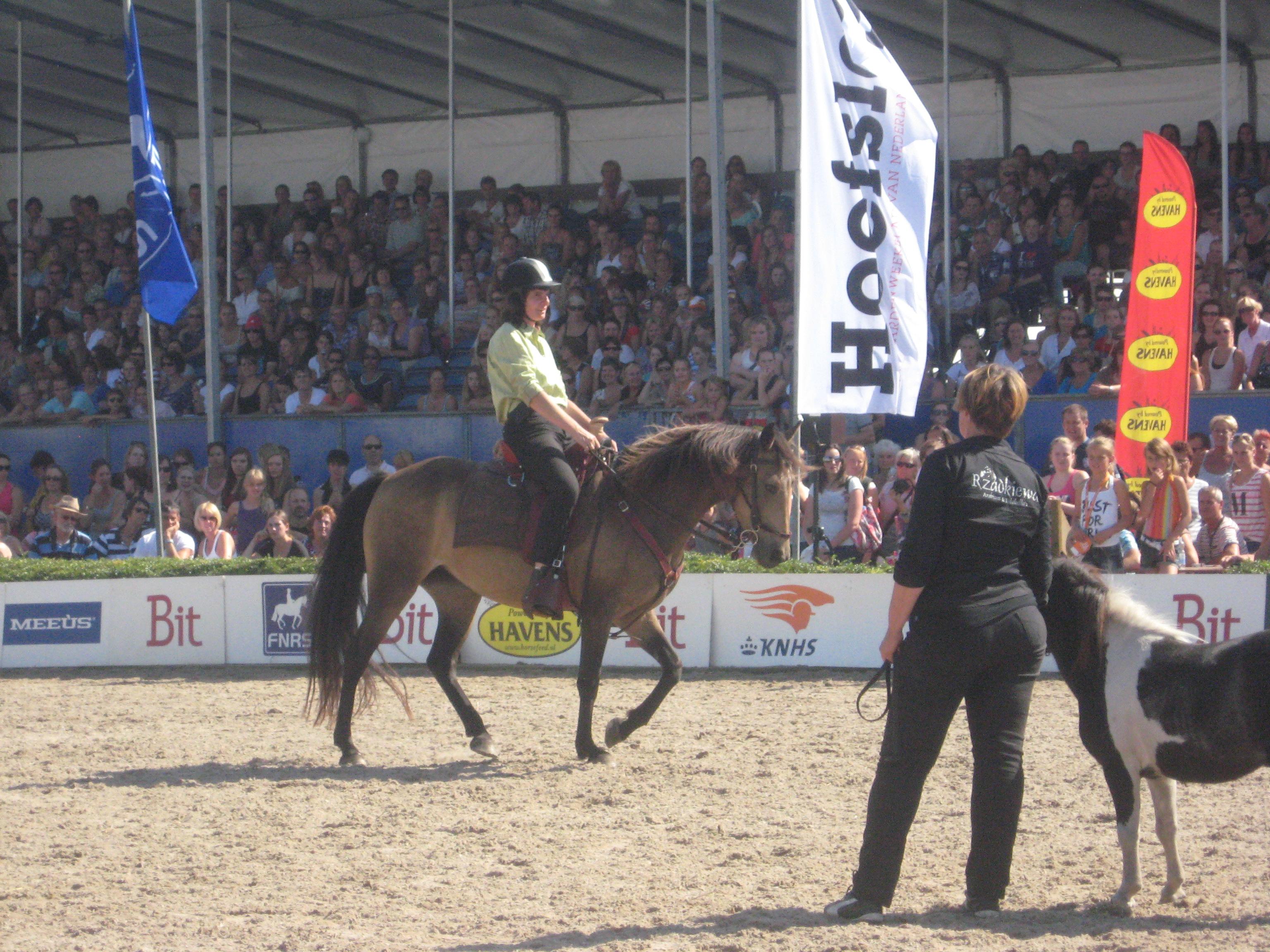 Horse Event Deurne 2012